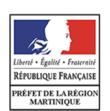 Préfet Martinique